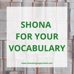 speak shona