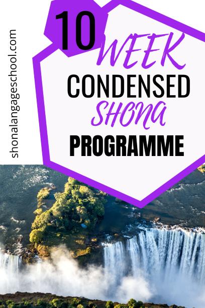learn shona in 10 weeks